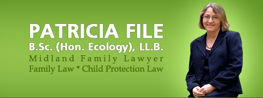 Patricia File Law Office